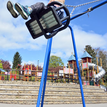 picture of a child on a swing