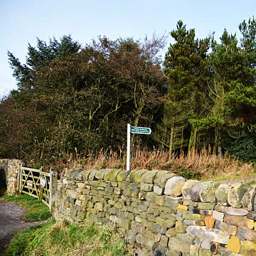 Outdoor scene of Otley Chevin